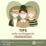 OLIVO_ABRIL23