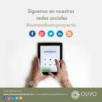 OLIVO_NOV7 (1)