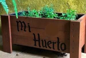 Foto mi huerto piso sin logo