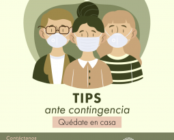 Tips ante contingencia: Comunicación Virtual